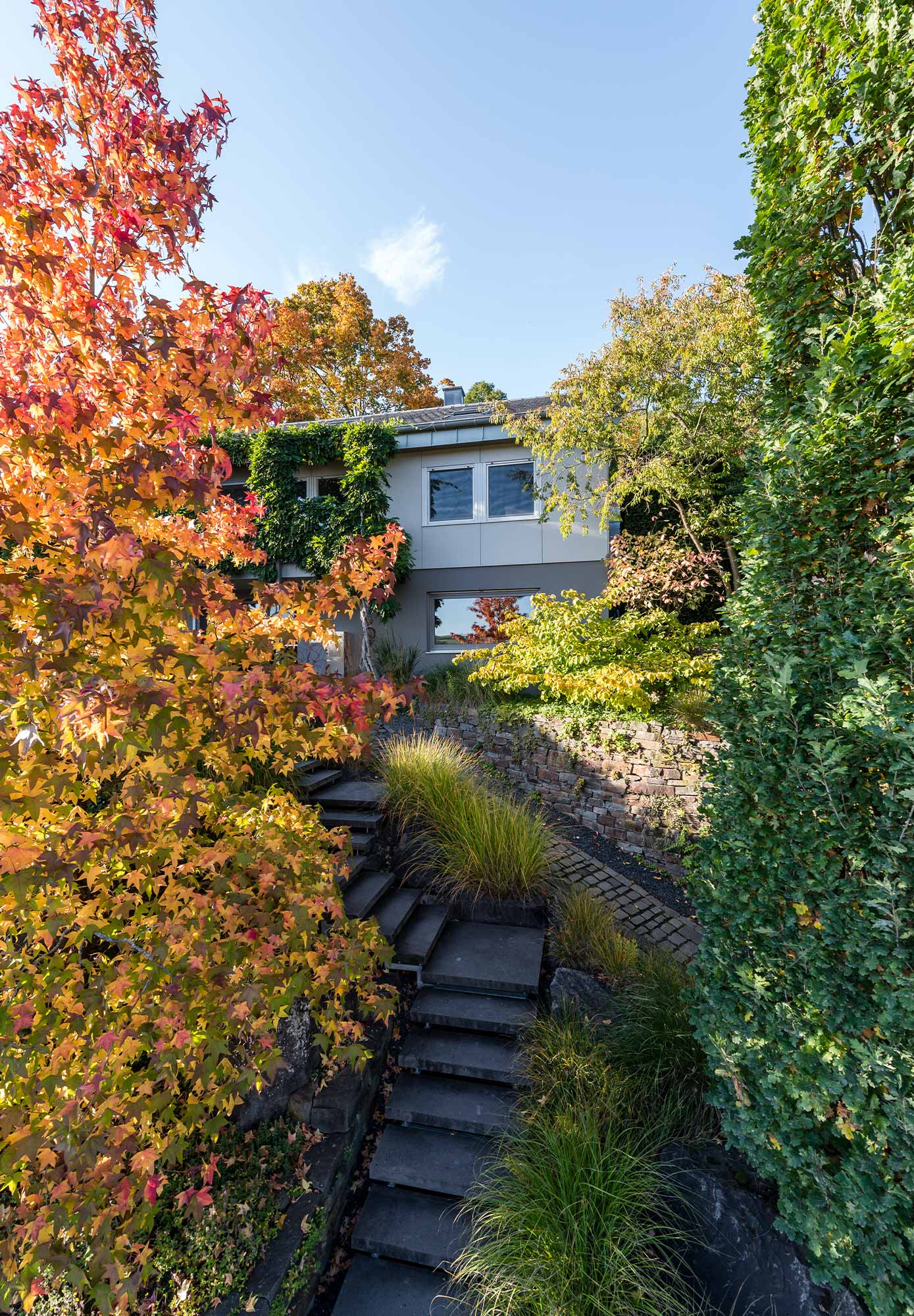 Stairs lead through the colourful front garden up to the house