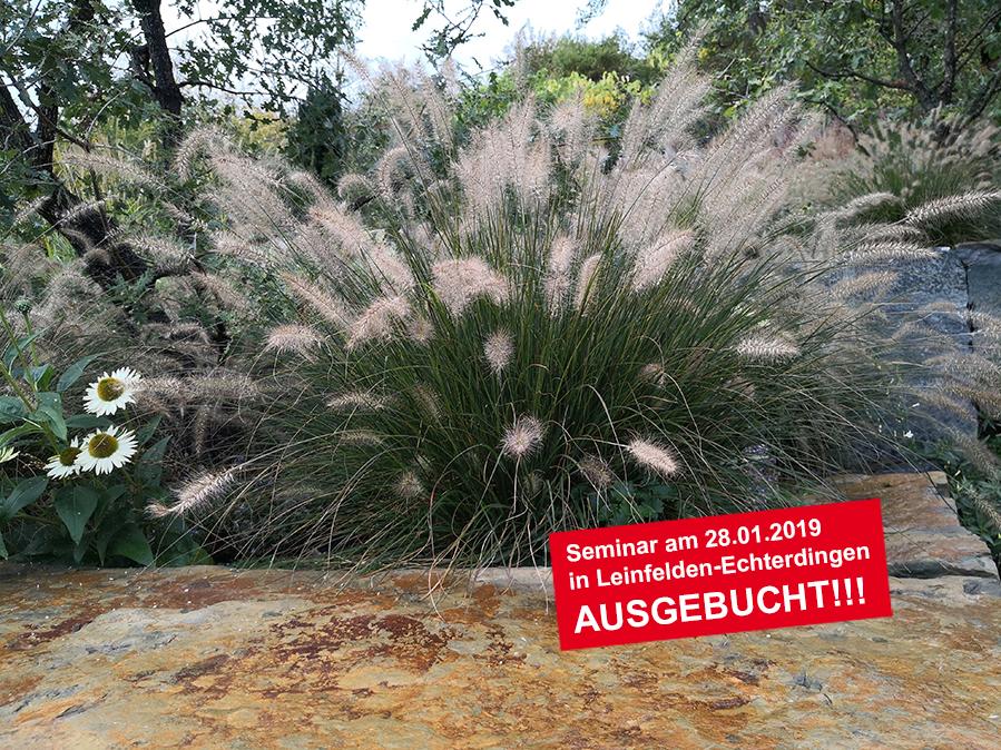 Gräser Naturstein Seminar ausgebucht