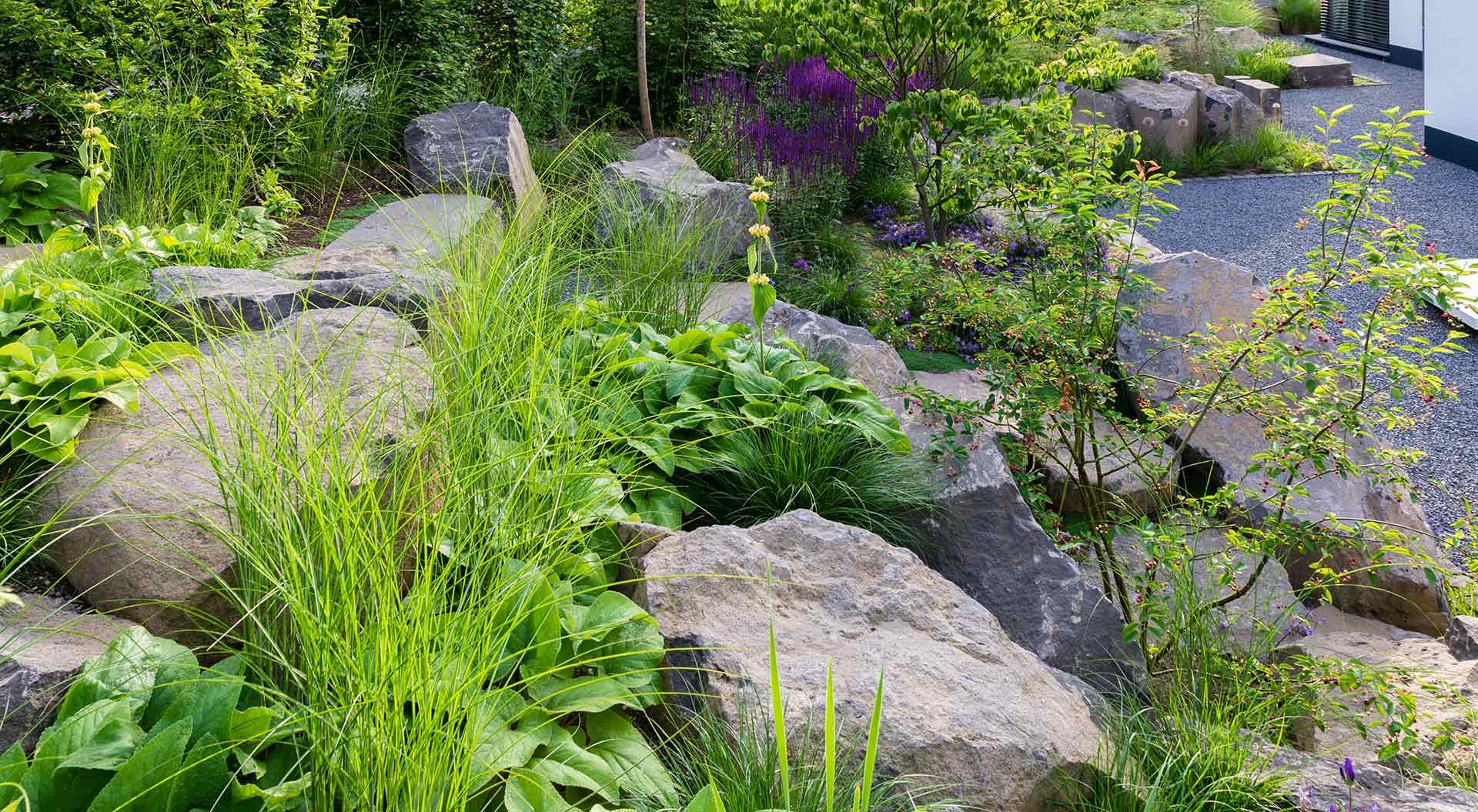 Blick auf Pflanzen und Natursteine, welche Teil eines Hanggartens sind