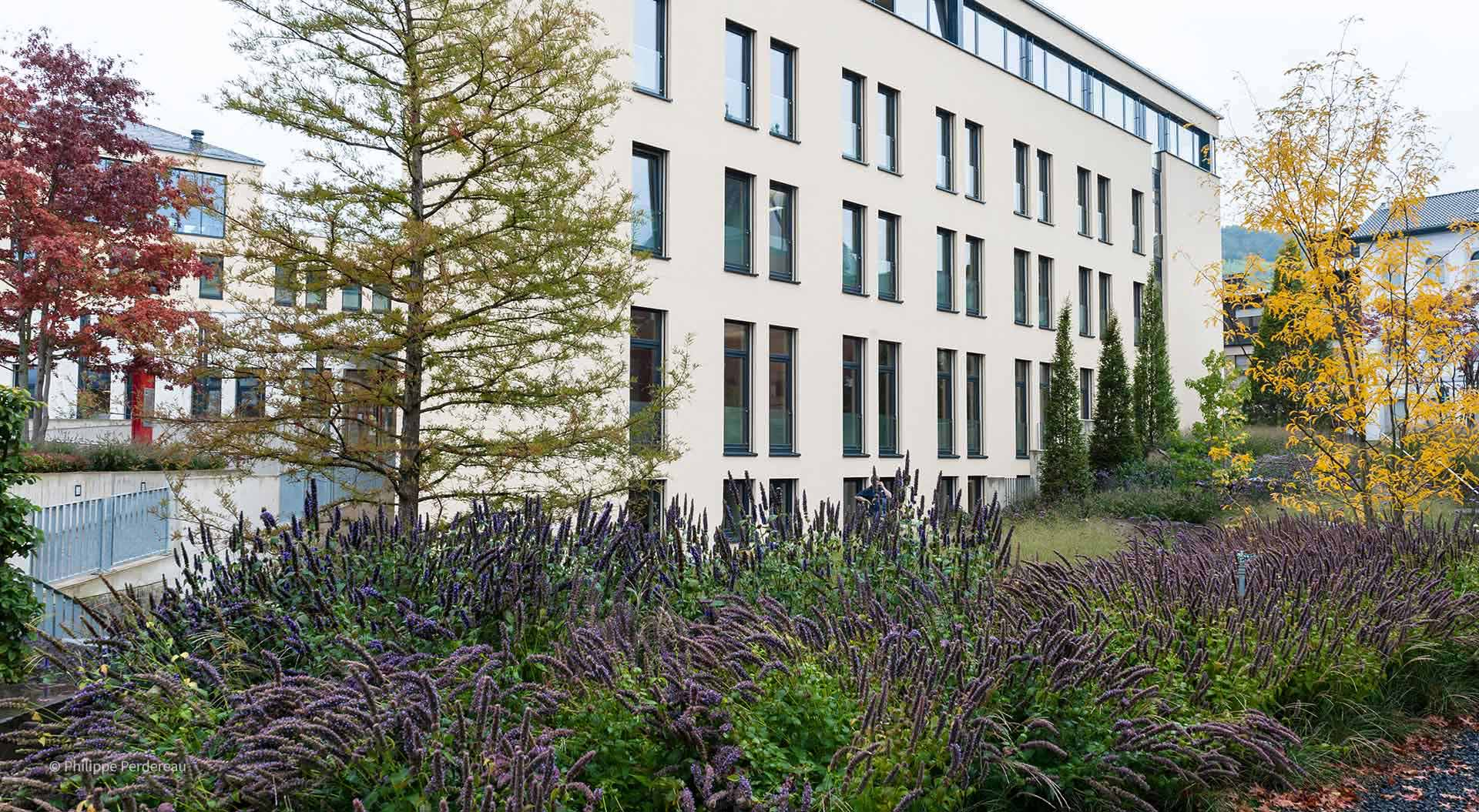 Sparkassengebäude von außen mit Blick auf den Garten