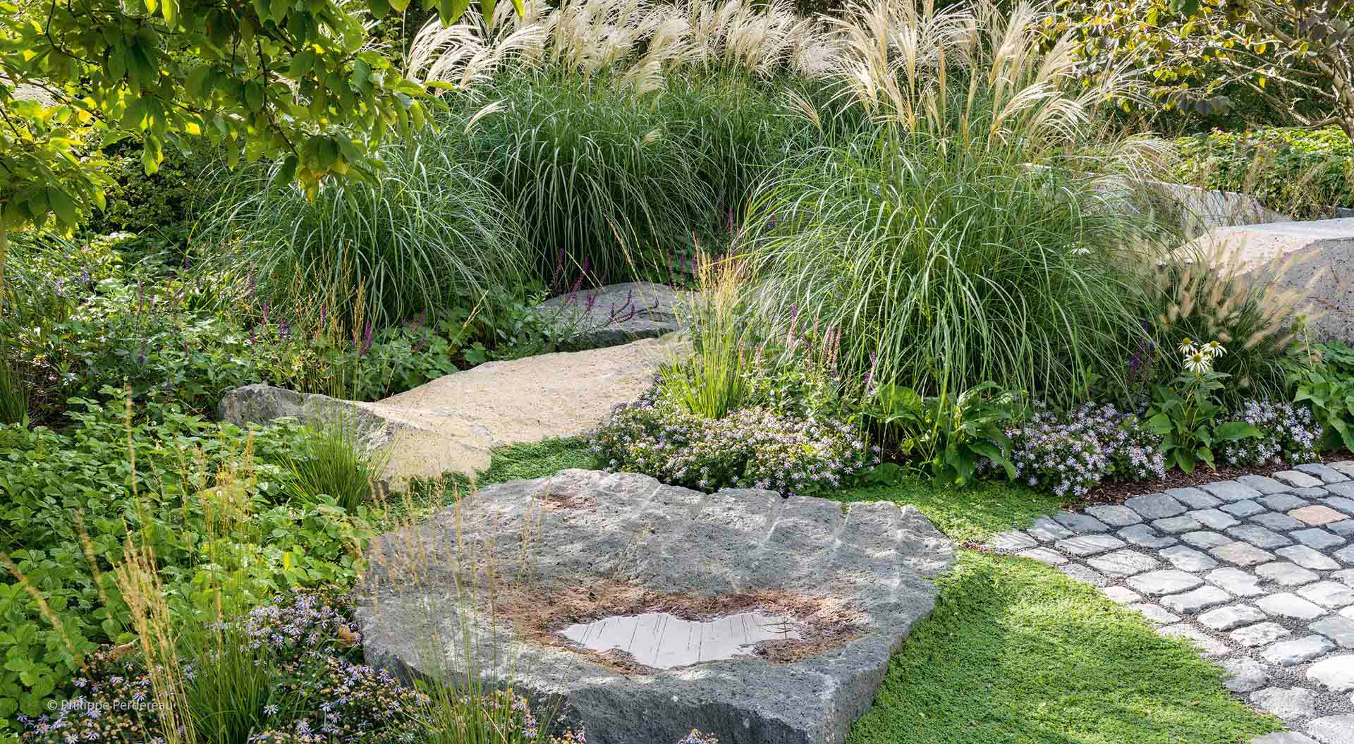 Grasses, stones and plants combined
