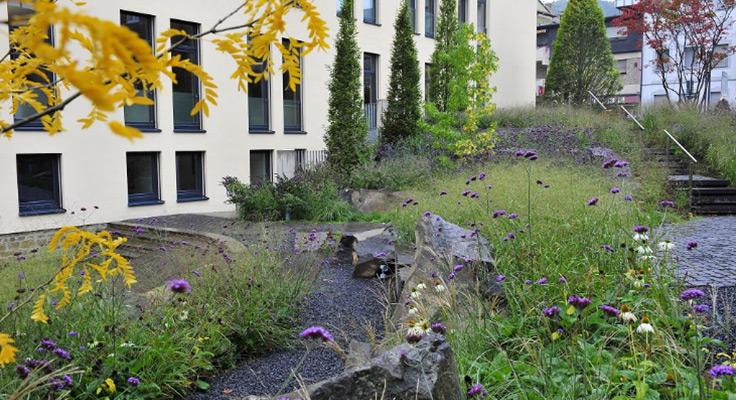 Company building adjoins natural garden with stones and plants