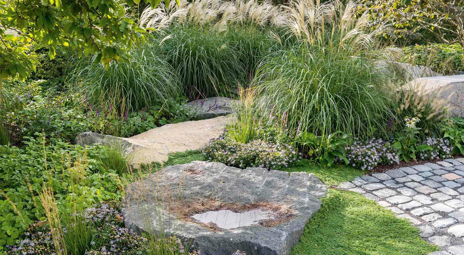Pflanzen und Steine im Garten
