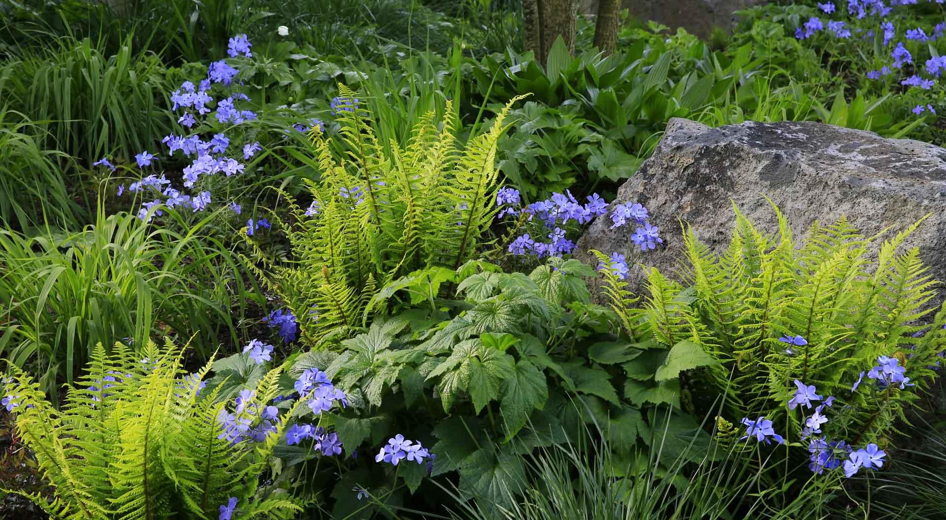 Nahaufnahme von schön kombinierten Gräsern, Blumen und Steinen