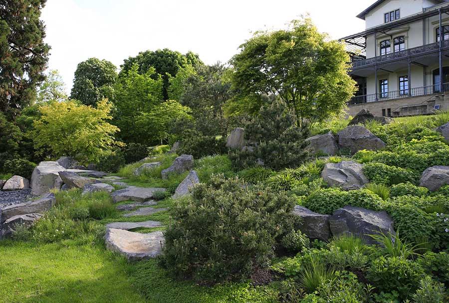 Firmengarten am Arp-Museum mit Bäumen, Sträuchern, Steinen und Pflanzen