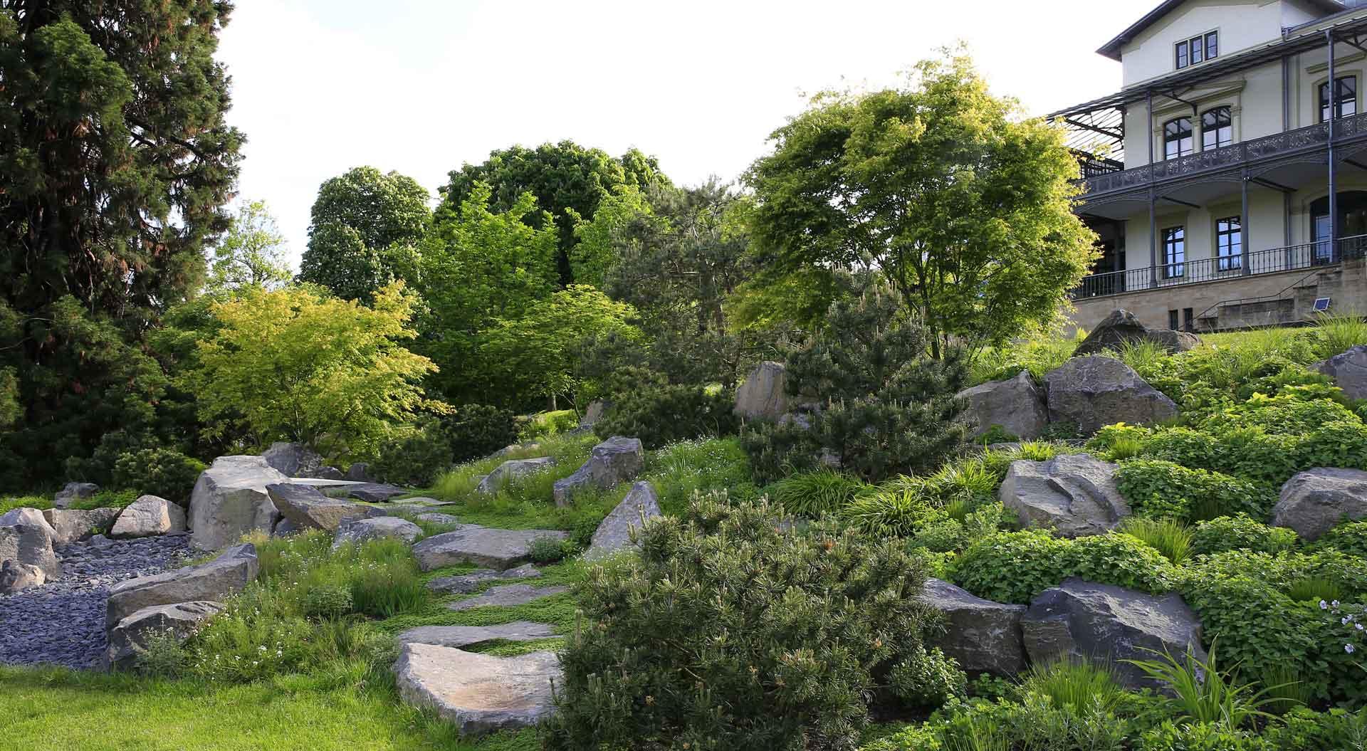 Blick auf den von Peter Berg angelegten vielfältigen Garten des Arp-Museums