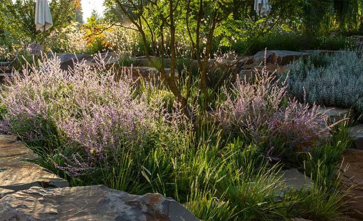 Firmengarten mit Gräsern und Bäumen verströmt eine entspannte Atmosphäre