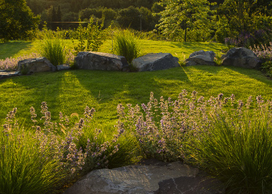 Multi-area garden with plants and stones at sundown