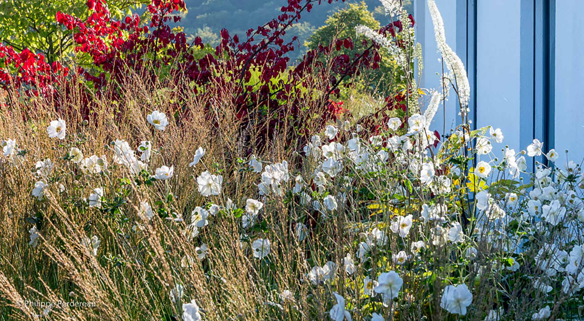 White and red flowers combined with grasses