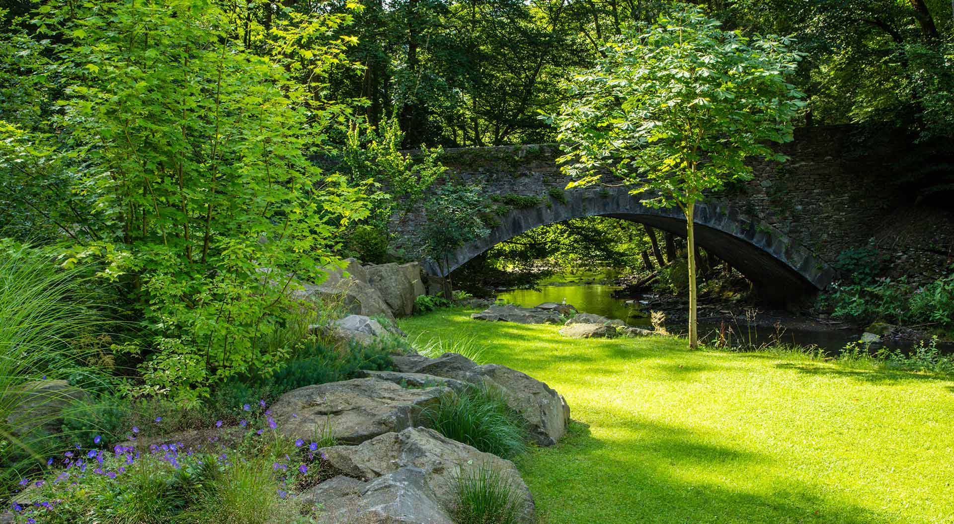 Garden with much grass, natural stones and green plants