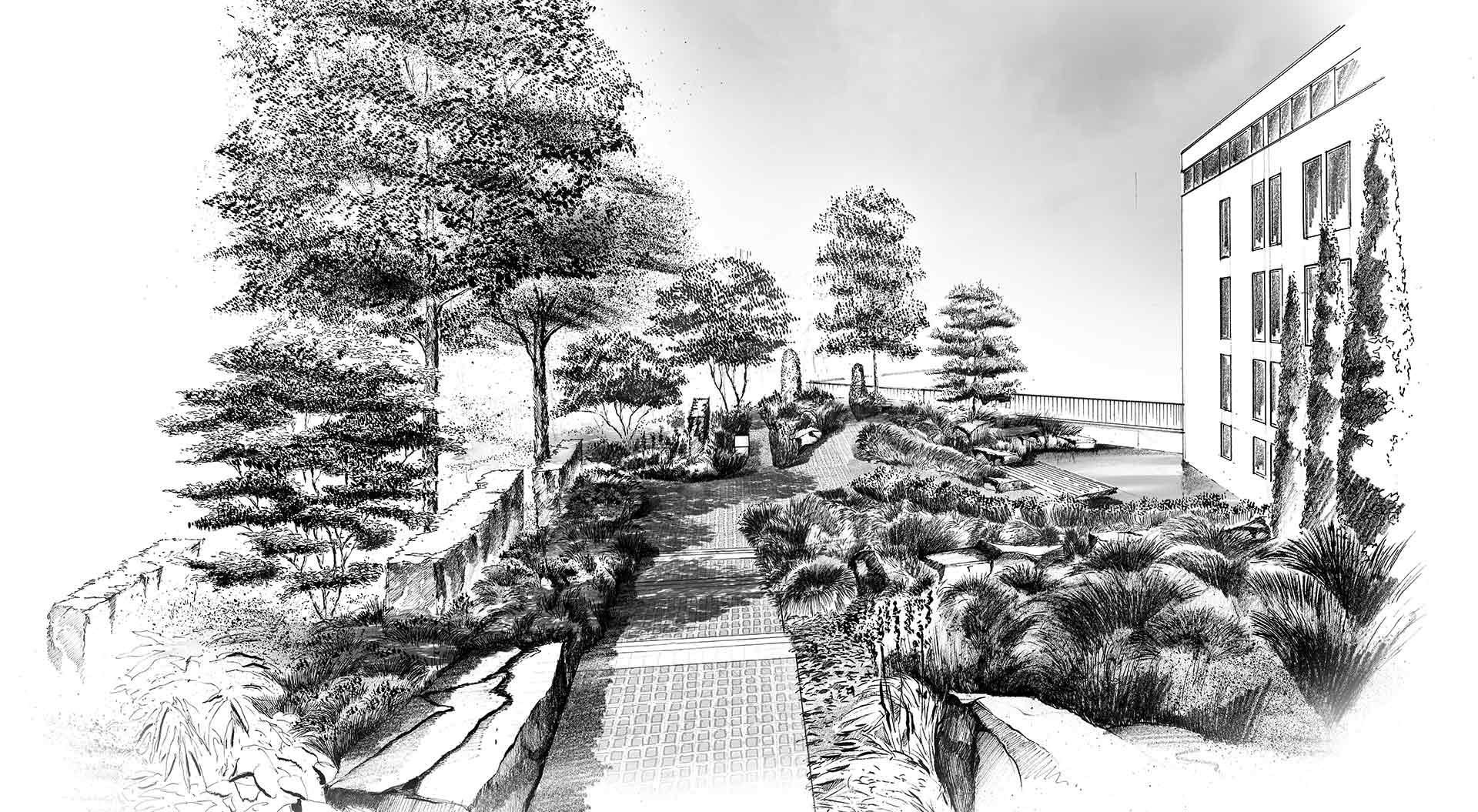 Sketch of a big company garden with paths and plants
