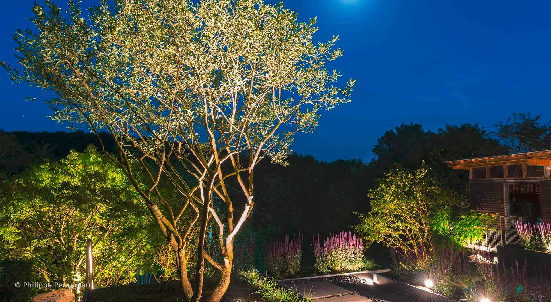 Slope garden at night where the lightings shine out
