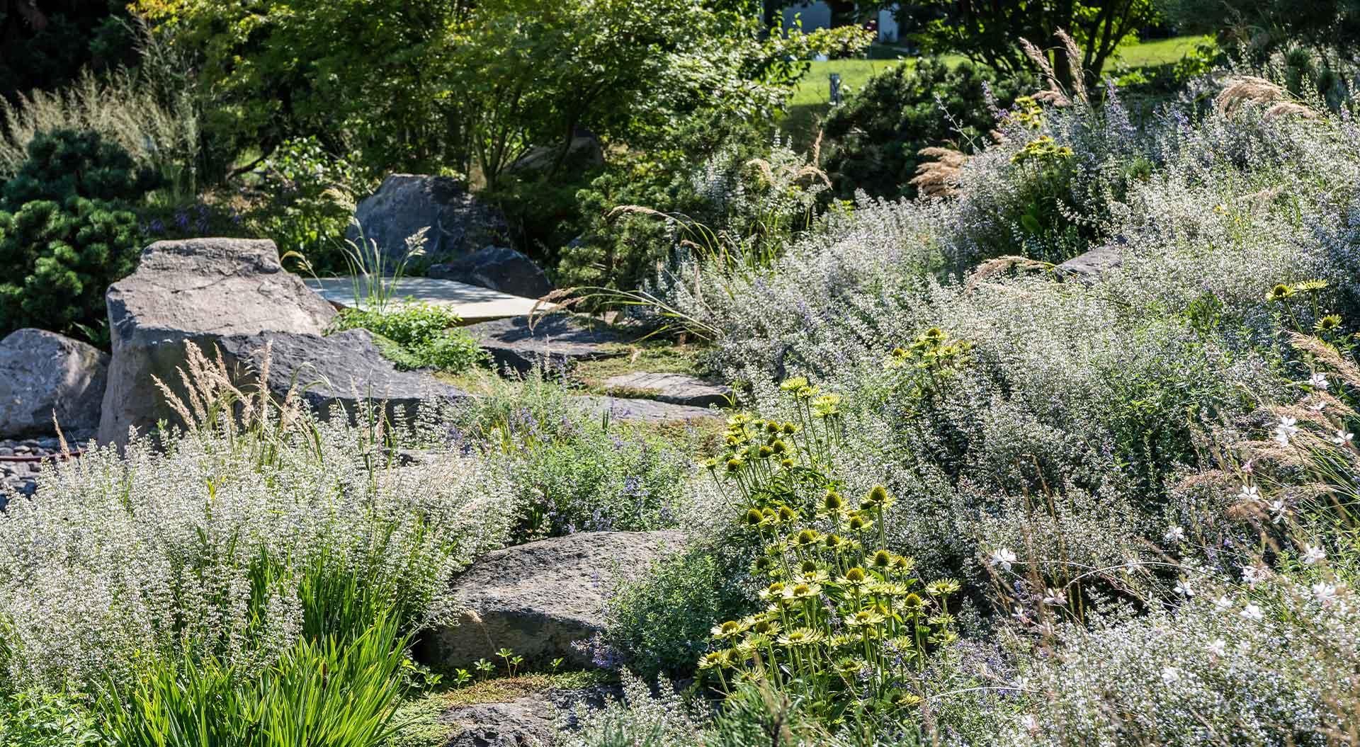 Blumen und Sträucher umringen einen Weg aus Natursteinplatten