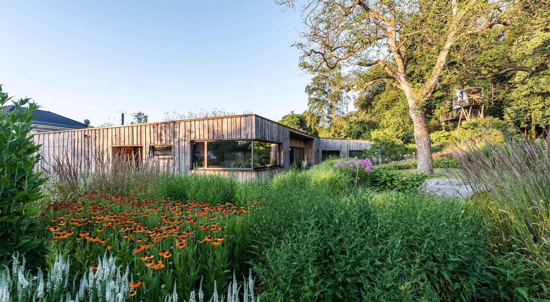 Holzhaus inmitten von Blumenwiese und schönen Pflanzen