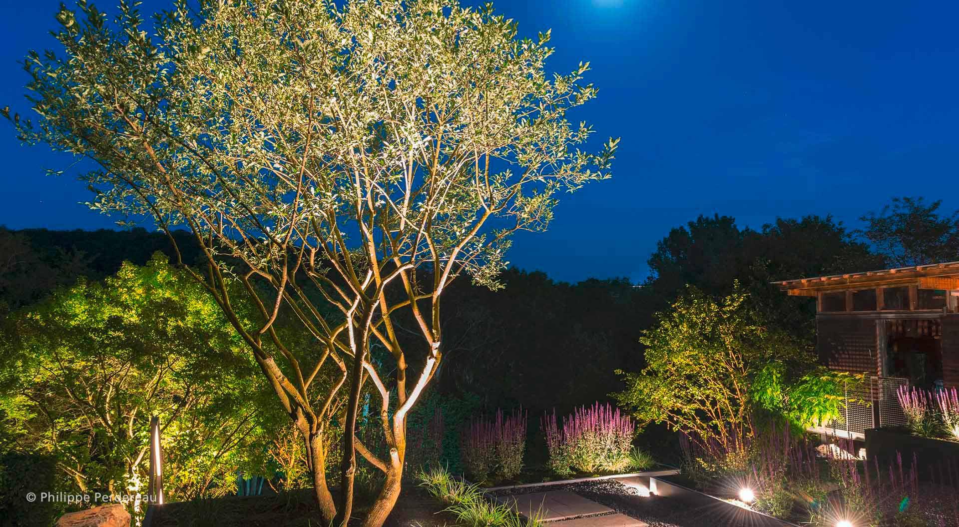 Hanggarten bei Nacht gut beleuchtet