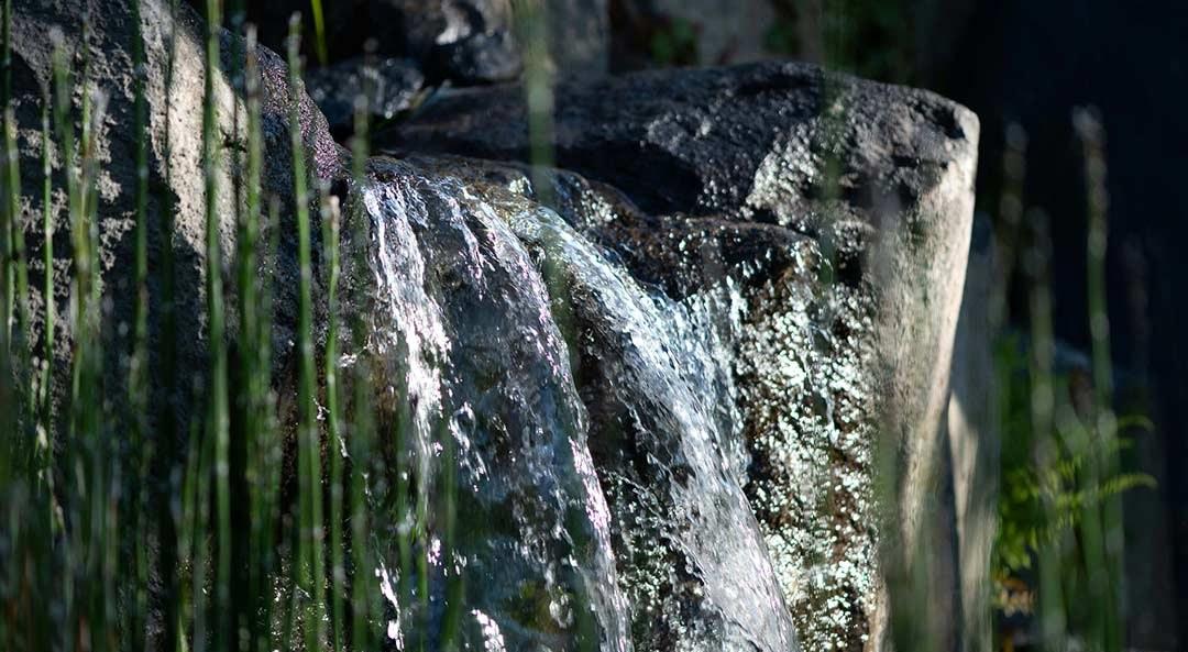 Steine, Wasser und Pflanzen in Kombination