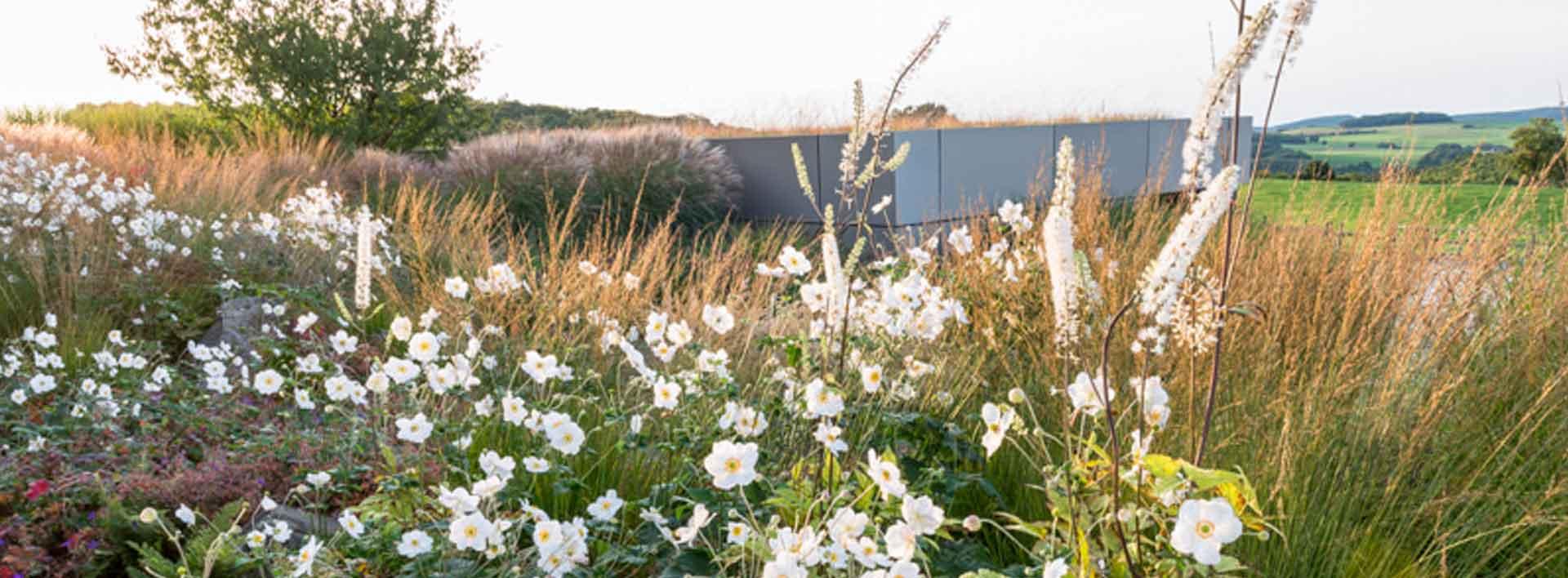 Gartenpflanzung mit Gräsern, Stauden und Gehölzen