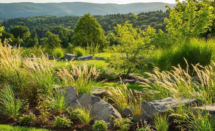 Ein mit Gräsern bepflanzter Hanggarten