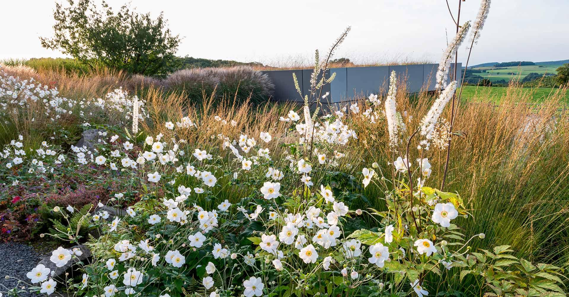 Blick auf zahlreiche Blumen und ins Grüne sowie die Landschaft
