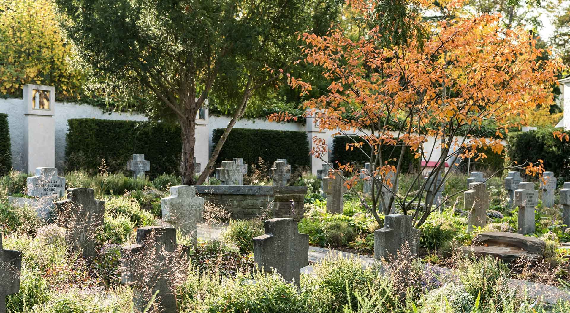 Cemetery aesthetically decorated with plants and trees