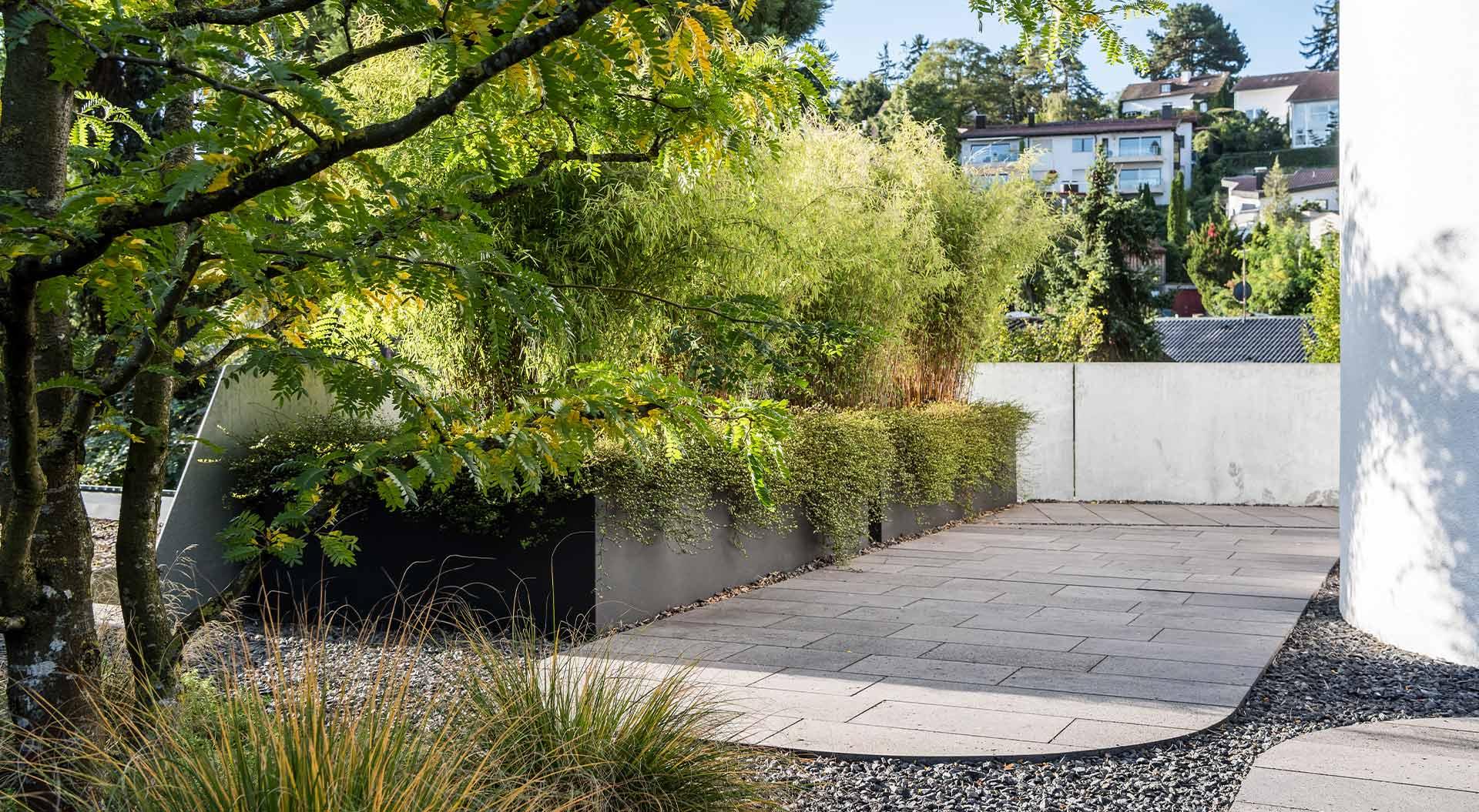 Narrow courtyard area within the natural green garden