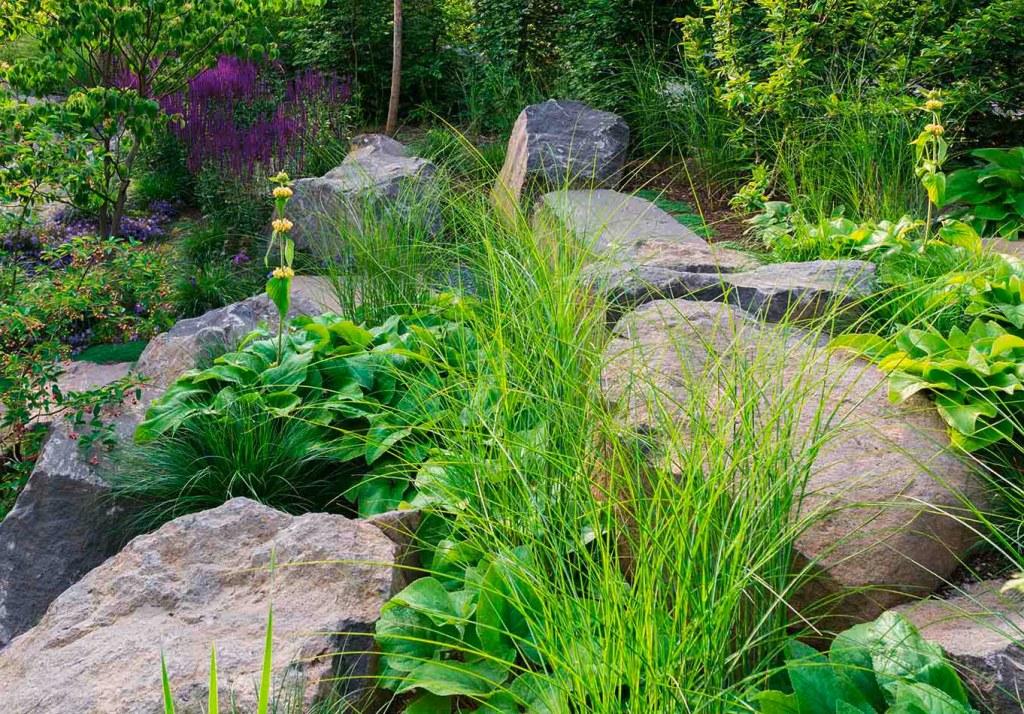 Natursteine liegen entlang frischer grüner Pflanzen im Schaugarten